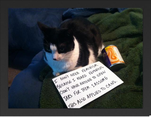 Feminisme frå ein katt sitt perspektiv.